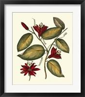 Framed Jenna's Flowers III