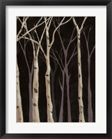 Framed Midnight Birches II