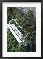 Framed White Bench