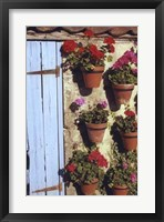 Framed Geranium Wall