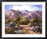 Framed Catalina Mountain Foothills