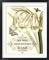 Jardin Botanique I Framed Print