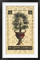 Framed Palm of the Islands I