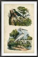 Framed Avian Sanctuary I