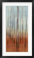 Birch Forest II Framed Print