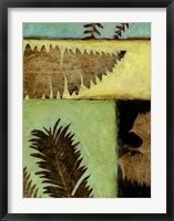 Fossilized Ferns IV Framed Print