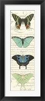 Butterfly Prose Panel II Framed Print