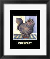 Framed Purrfect