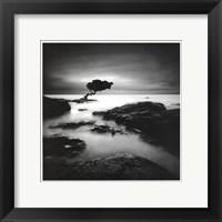 Framed Tree Of Temptation - Mini