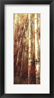 Framed Birch Forest I - Mini