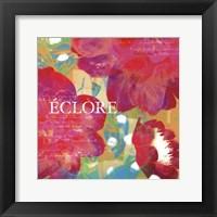 Framed Eclore - Mini