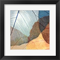 Blue and Orange Leaves II Framed Print