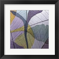 Framed Purple and Grey Leaves I