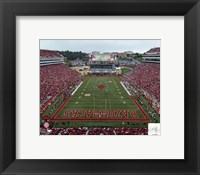Framed Razorbacks Stadium University of Arkansas Razorbacks 2012