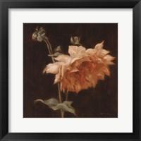 Framed Floral Symposium III