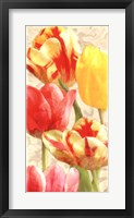 Framed Glowing Tulips I