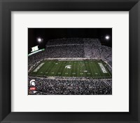 Framed Spartan Stadium Michigan State University Spartans 2012