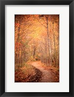 Framed Winding Autumn Path