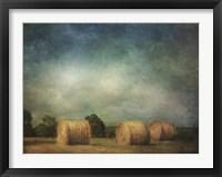 Framed Hay Rolls