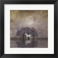 Framed White Horse in Pond