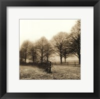 Fence Row and Trees Framed Print