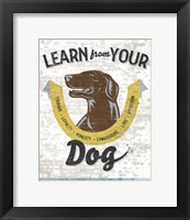 Framed Learn From Your Dog