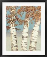 Framed Golden Birches III