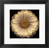 Ambiance Framed Print