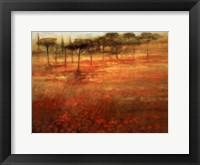Framed Forest Afar