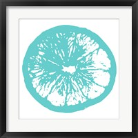 Aqua Orange Slice Framed Print