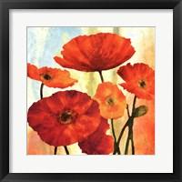 Framed Poppy Variation 1