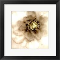 Framed Whisper of Dahlia