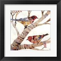 Framed Warblers II