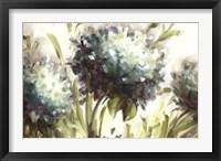 Framed Hydrangea Field