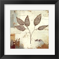 Framed Silver Leaves III