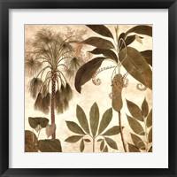 Framed Palm Persuasion II