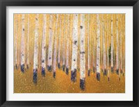 Framed Portrait Of Aspens