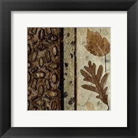 Framed Earthen Textures VI