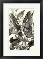Framed B&W Butterfly II