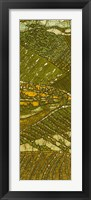 Vineyard Batik I Framed Print