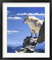 Framed Rocky Mountain High