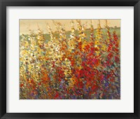 Framed Field of Spring Flowers I