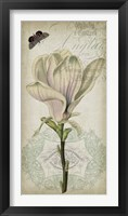 Cartouche & Floral I Framed Print