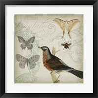 Cartouche & Wings II Framed Print