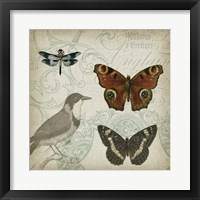 Cartouche & Wings IV Framed Print