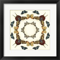 Butterfly Collector I Framed Print