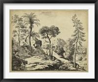 Framed Classical Landscape I