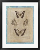 Bookplate Butterflies II Framed Print