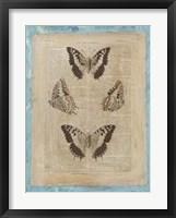 Bookplate Butterflies II Framed Print