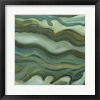 Framed Sea Kelp I